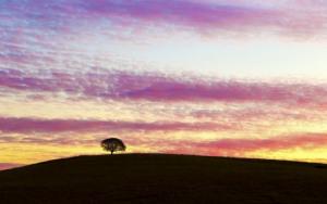Truyện Ngắn: Vệt nắng cuối trời