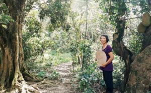 Cô giáo về hưu 15 năm sống trên ốc đảo ở Vĩnh Phúc: Không cần ra chợ, không biết bệnh tật và không cần đến tiền!