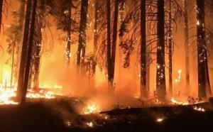 """Cảnh báo chấn động: Nếu Mỹ tiếp tục thờ ơ, biến đổi khí hậu sẽ """"nuốt"""" hàng trăm tỉ USD!"""