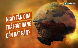 """Trái Đất đang lâm vào kỳ """"Hủy diệt Sinh học"""": Nhanh gấp 4000 lần so với thời khủng long"""